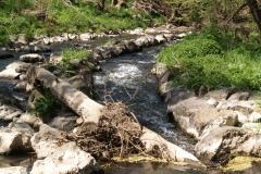 Fluss Fulda an der Horasbrücke